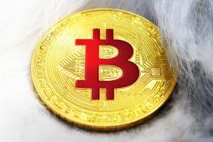 Bitcoin moneta virtuale blockchain
